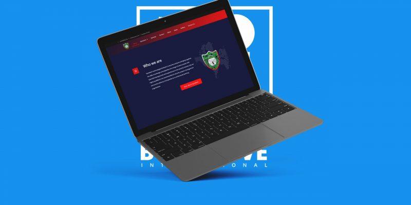 boiyelove-portfolio-systakom-technologies-website (4)